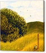 Beyond The Path Canvas Print