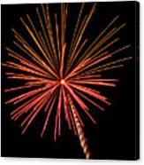 Bi-color Fireworks 2 Canvas Print