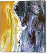 Bi-polar Canvas Print