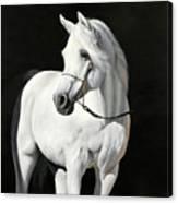 Bianco Su Nero Canvas Print
