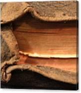 Bibeln Canvas Print