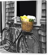 Bicycle With Flower Basket Canvas Print