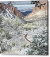 Big Bend Window With Snow Canvas Print