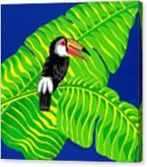 Big Billed Bird Canvas Print