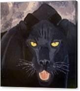 Big Cat IIi Canvas Print