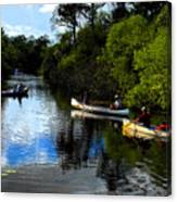 Big Cypress Outing Canvas Print