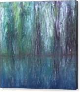 Big Cypress Swamp Canvas Print