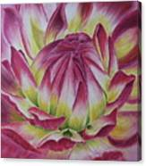 Big In Pink Canvas Print