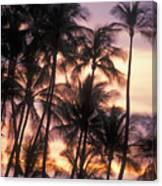 Big Island Palms Canvas Print