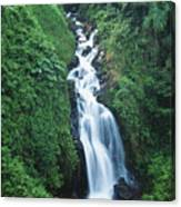 Big Island Watefall Canvas Print