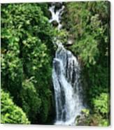 Big Island Waterfall Canvas Print