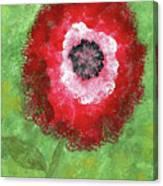 Big Red Flower Canvas Print