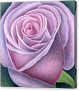 Big Rose Canvas Print