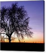 Big Sky - New Mexico Canvas Print