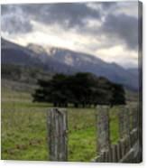 Big Sur Fence Line Canvas Print