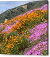 Big Sur Spring Canvas Print