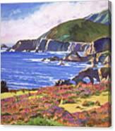 Big Sur Wildflowers - Plein Air Canvas Print