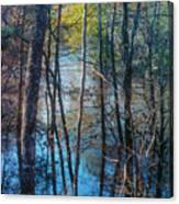 Big Thicket Water Reflection Canvas Print