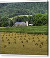 Big Valley Farm Canvas Print