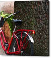 Bike Resting Canvas Print