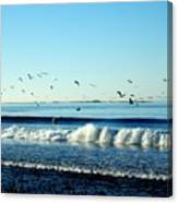 Billowing White Waves And Seagulls Canvas Print