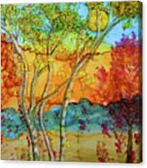Birch And Liquid Amber Canvas Print
