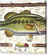 Birch Bass Canvas Print
