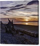 Birch Bay Evening Canvas Print