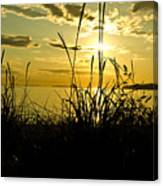 Birch Bay Sunset Canvas Print
