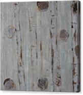 Birch - Fog 2 Canvas Print