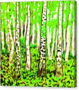 Birch Forest, Painting Canvas Print