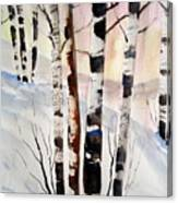 Birch In The Snow Canvas Print