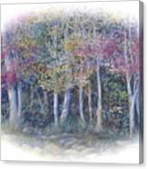 Birch Tree Gathering Canvas Print