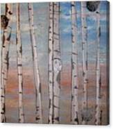 Birch Trees - Clouds Canvas Print