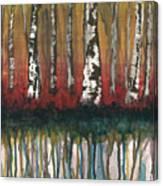 Birch Trees #2 Canvas Print