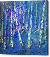 Birch Trees 3 Canvas Print