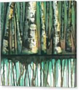 Birch Trees #5 Canvas Print