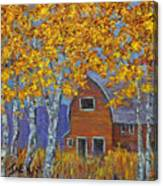 Birch Trees And Barn Canvas Print