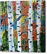 Birch Tree's Canvas Print