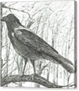 Bird, 2011 Canvas Print