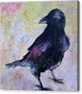 Bird Above His Chamber Door Canvas Print