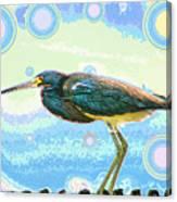 Bird Contemplates The Cosmos Canvas Print