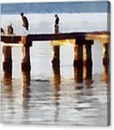 Bird Dock At Sunset Canvas Print