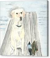 Bird Dog Canvas Print