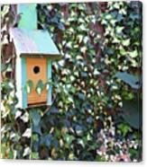 Bird Feeder In Ivy Canvas Print