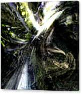 Bird Flight With Olive Branch Canvas Print
