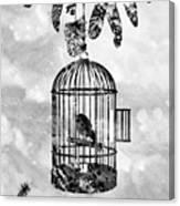 Bird In A Cage-black Canvas Print