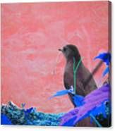 Bird In Abstract Canvas Print