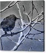 Bird In Digital Blue Canvas Print