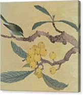 Bird In Loquat Tree Canvas Print